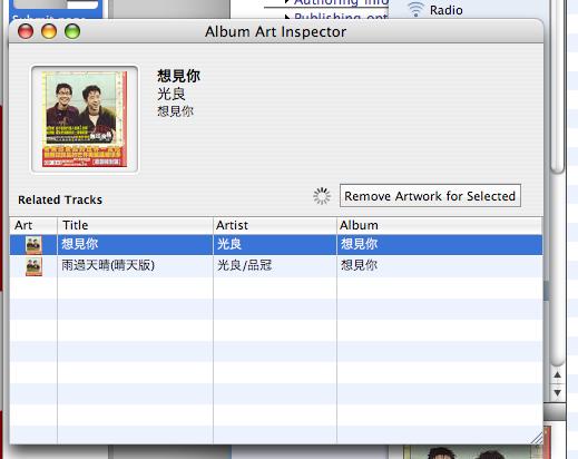 Album Art Inspector